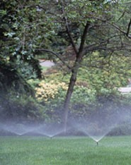 Multiple Sprinklers, Emission Devices in Walnut, CA